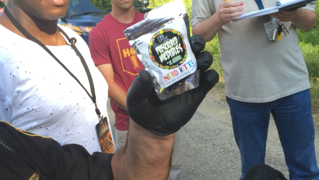 Officials said 24 people have been treated for drug overdoses at a music festival in Richland County._177593