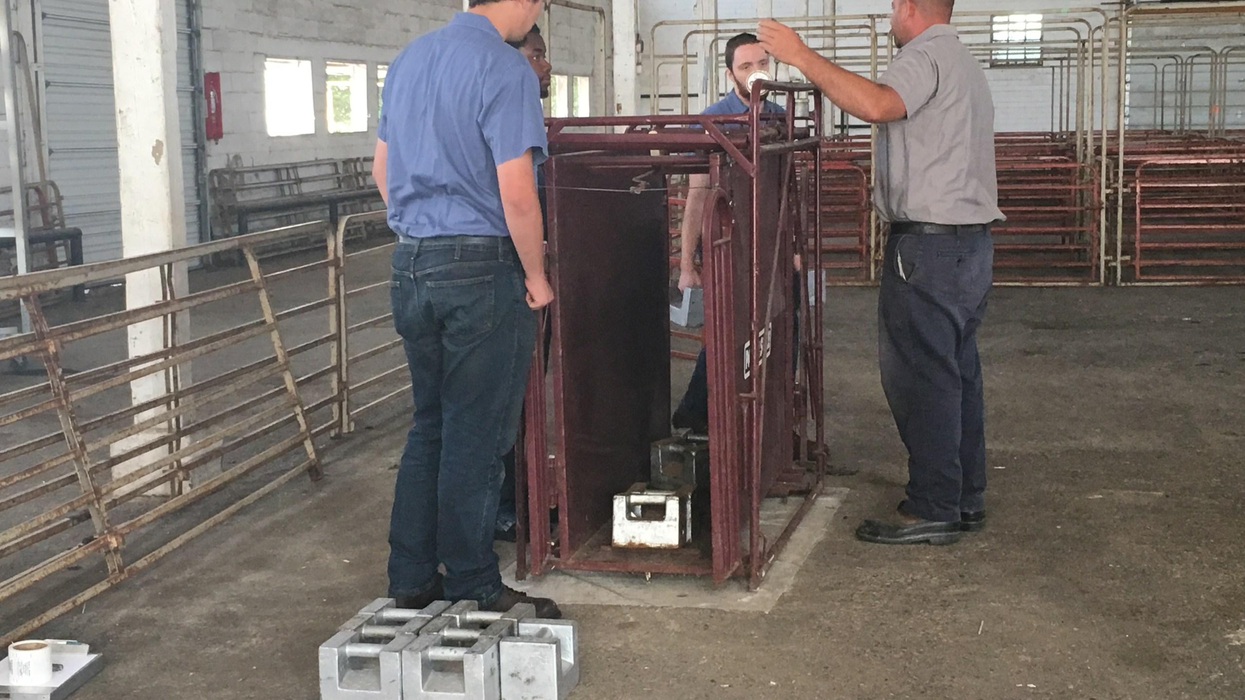 Montgomery County Fair Livestock Scale_253931