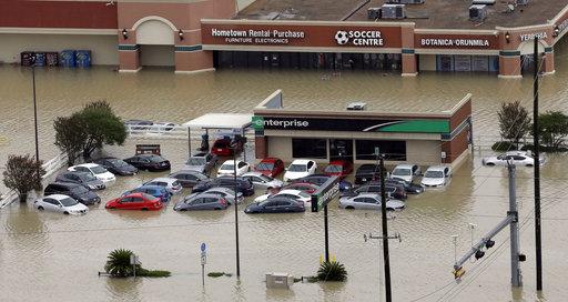 Flooding - Rental Cars_266394