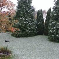 Springboro snow_276989