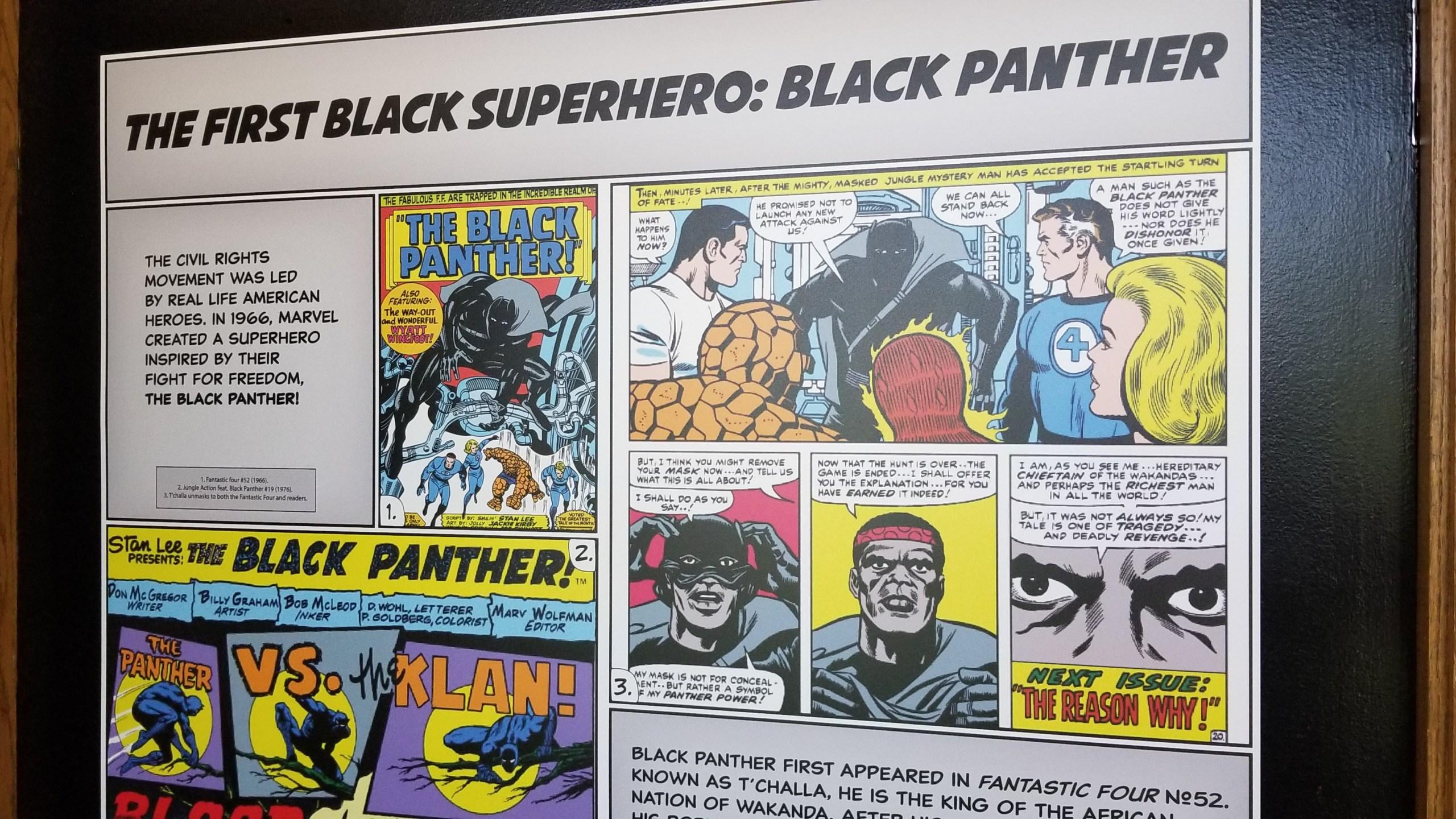 Black Panther Comic from museum_1526060638827.jpg.jpg
