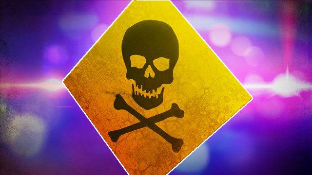 Poison_1535467263960-794298030.jpg