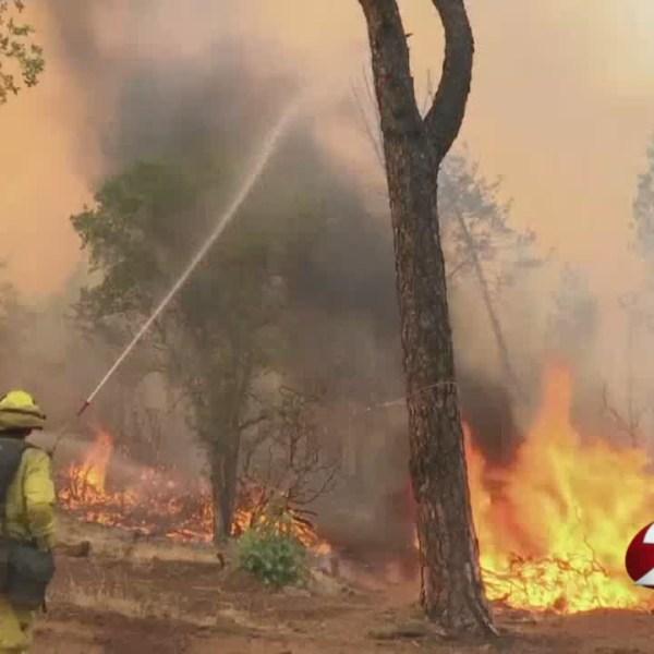 california wildfire 1_1533116652199.jpg.jpg