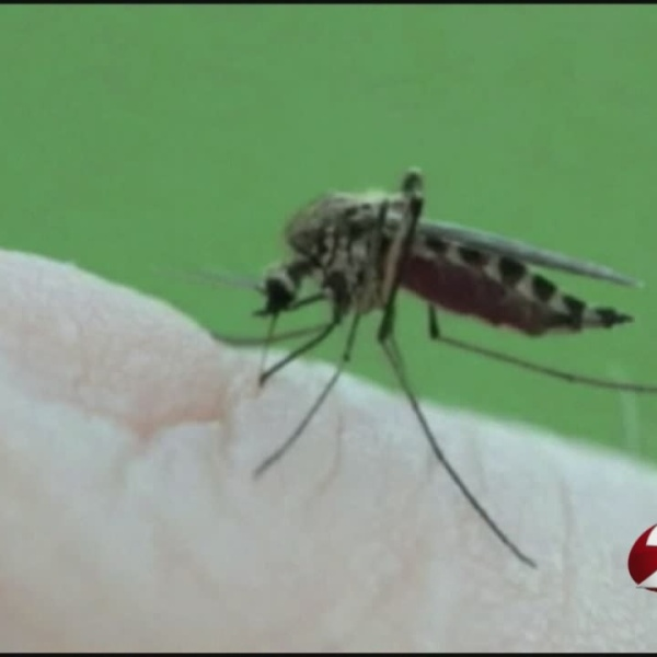 West_Nile_found_in_Montgomery_County_0_20180629210530