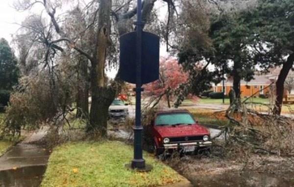 11-15 Shafor Blvd tree down_1542288526478.jpg.jpg
