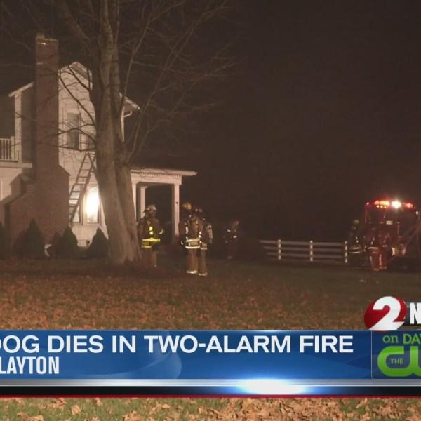 Dog dies in Clayton fire