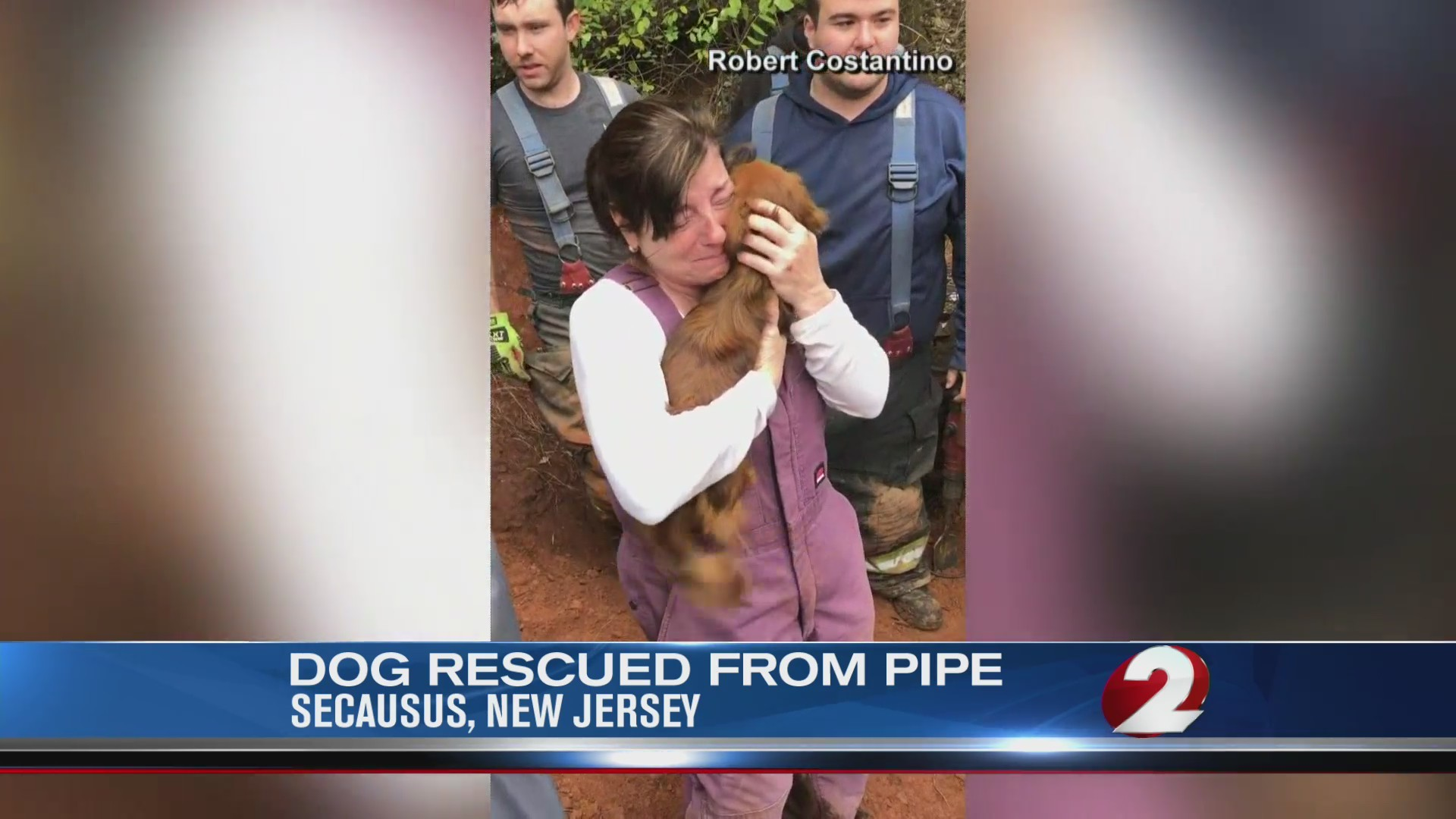Dog rescues from pipe in New Jersey