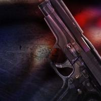 Armed Robbery, Shooting Generic_172225