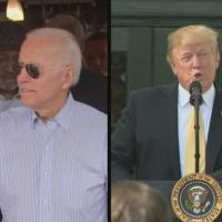Trump Weighs In On Biden's Bid For President