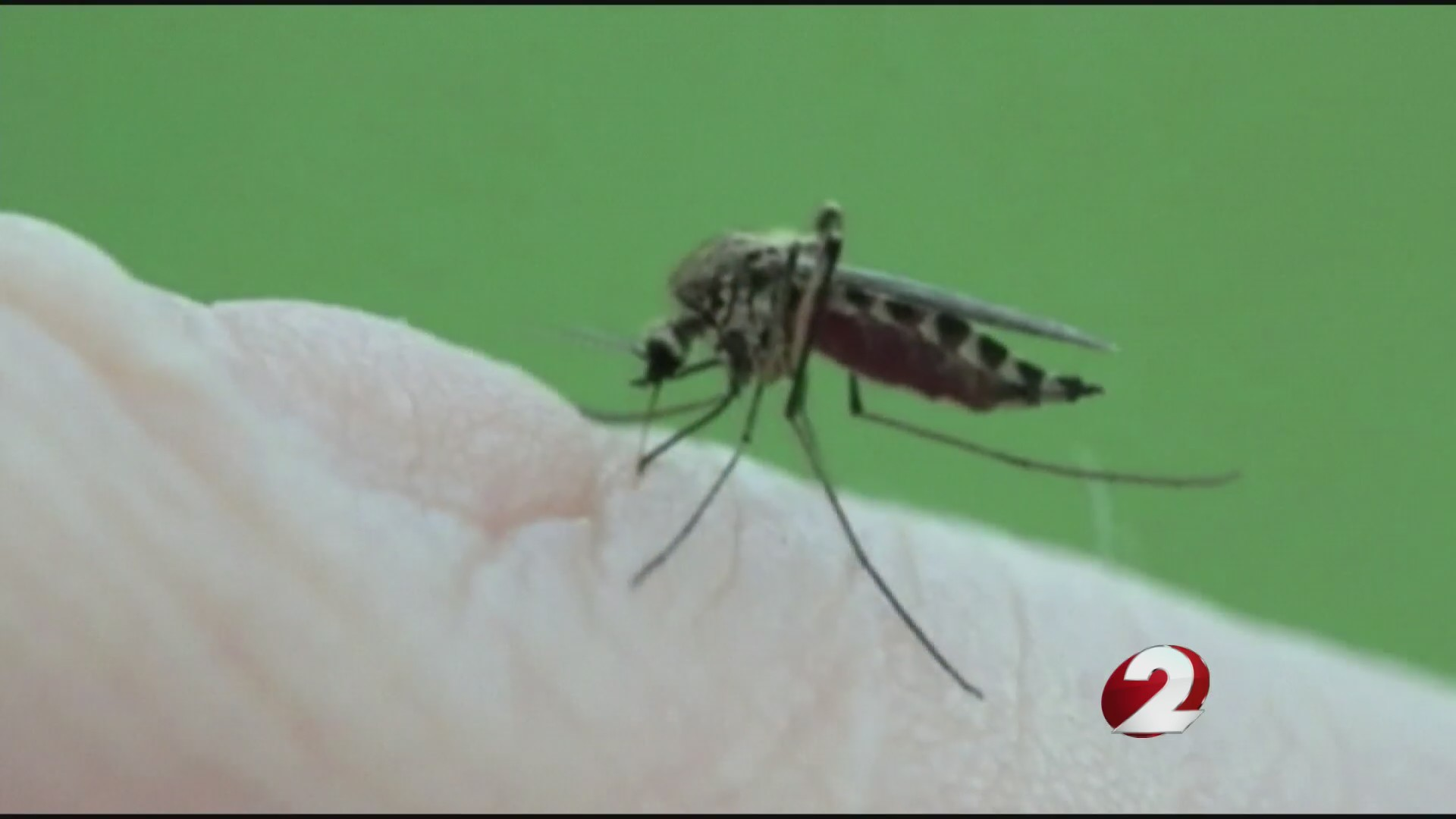 Mosquito surveillance begins in Montgomery Co.