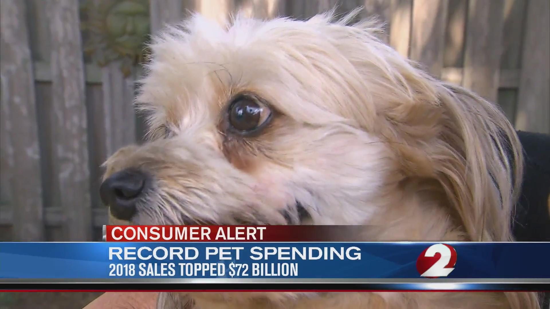 Record pet spending