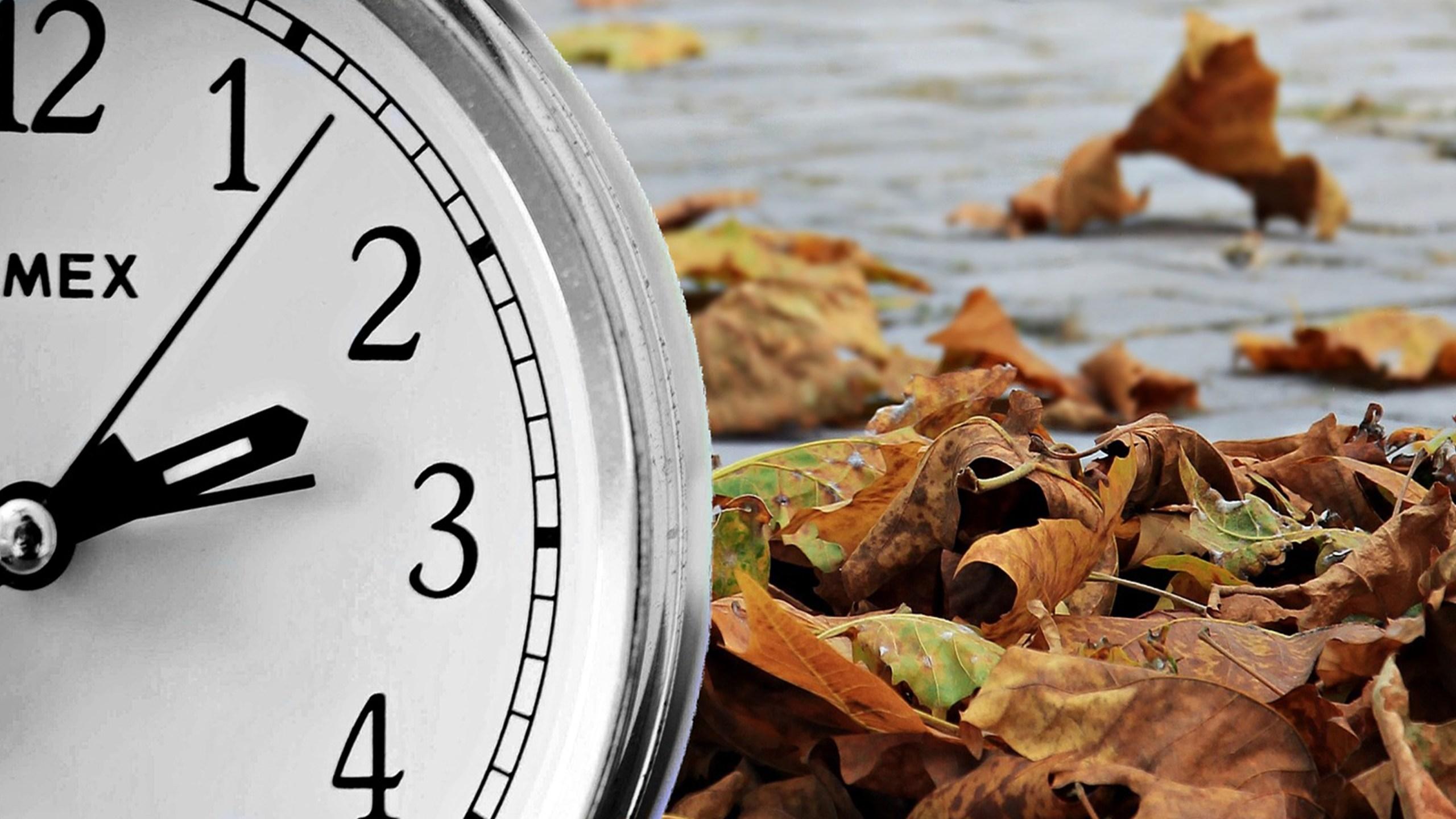 Fall back daylight saving