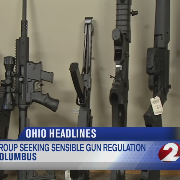 Group seeking sensible gun regulation