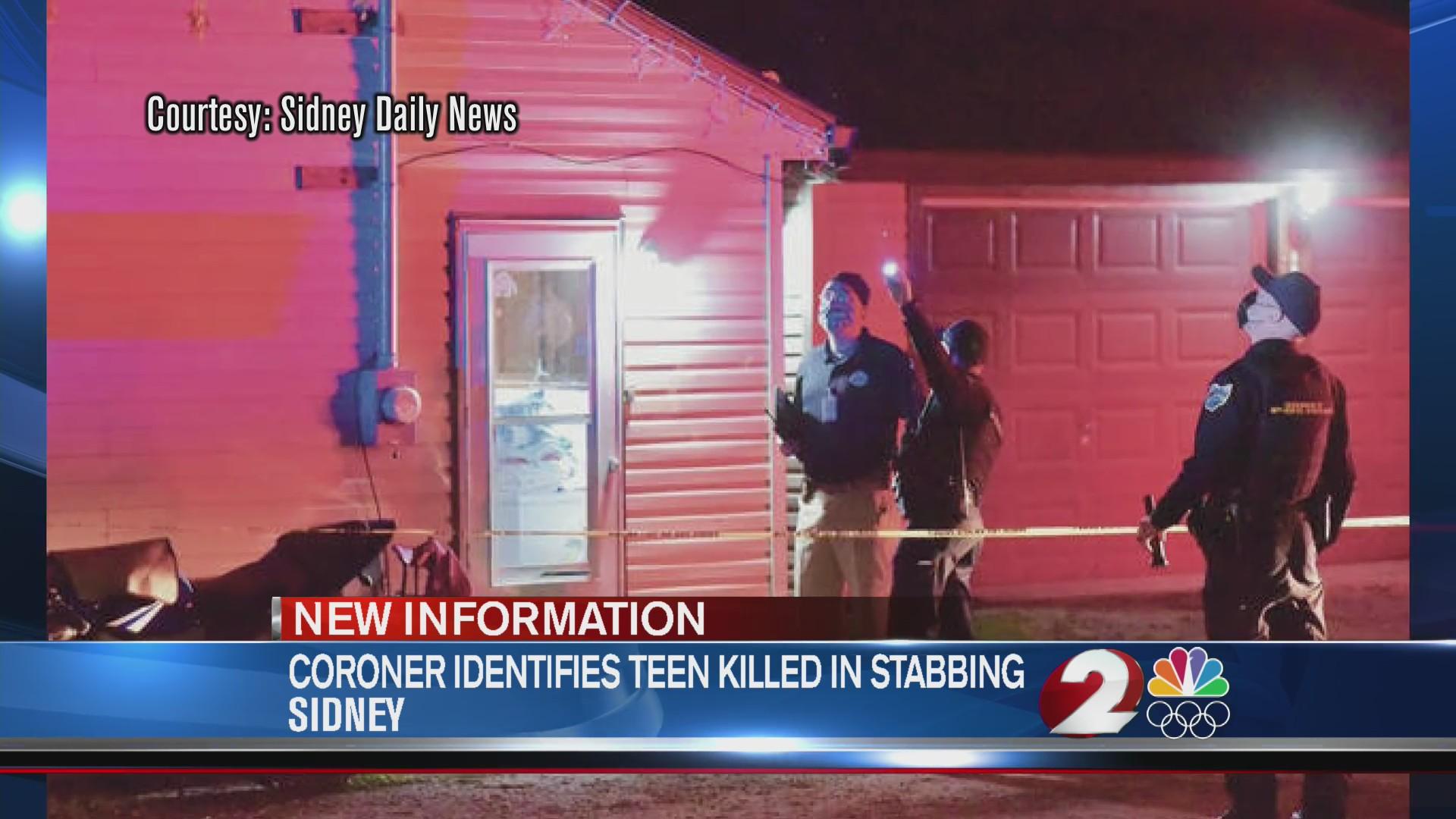 Teen killed in Sidney stabbing