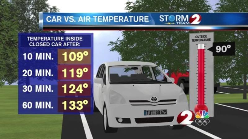 Hot car dangers