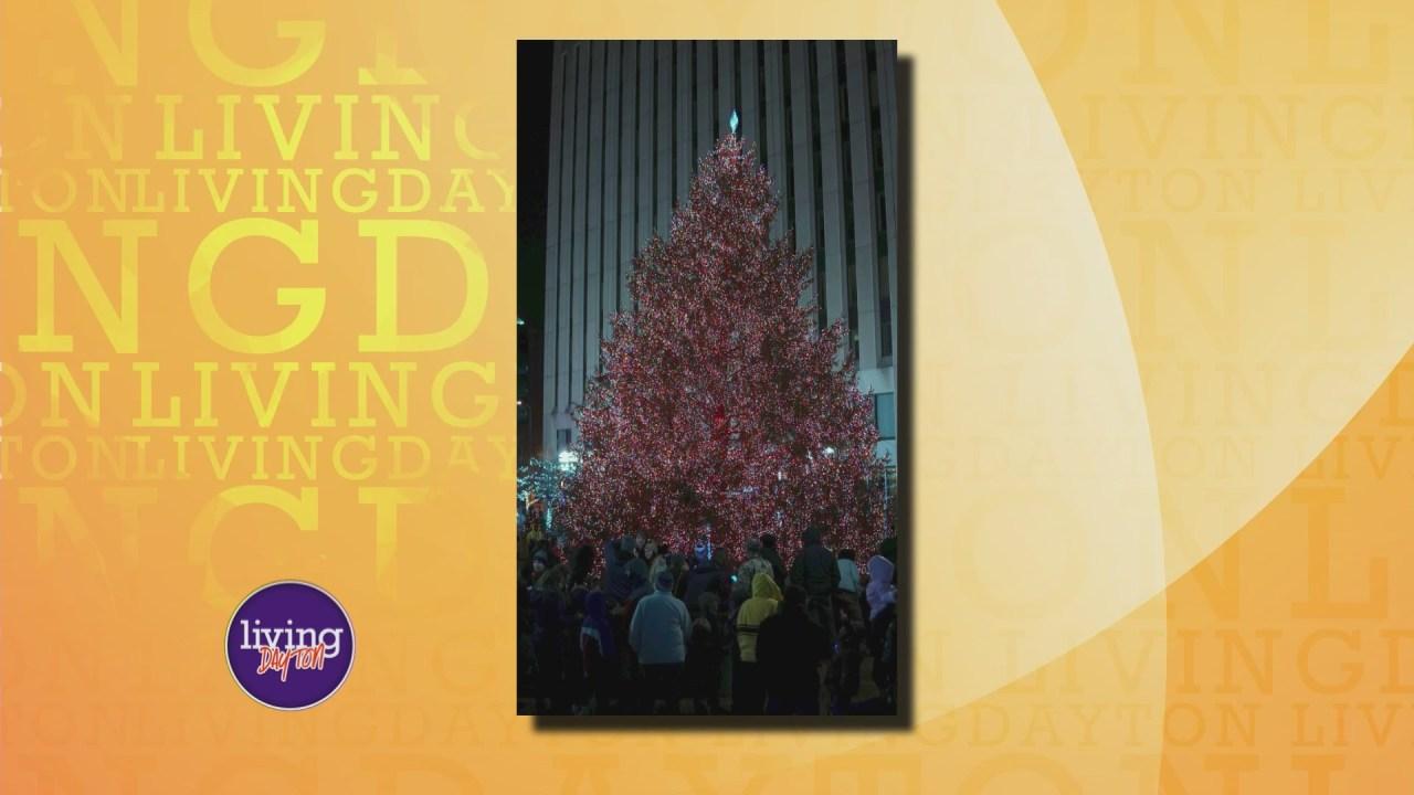 Dayton Holiday Tree Search Wdtn Com