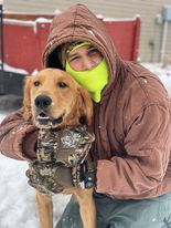 Celina dog rescued from Grand Lake